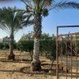 قطعة ارض تقع في المنطقة الشرقية من محافظة رفح