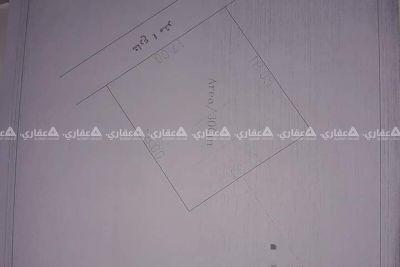 دير البلح شرق صلاح الدين
