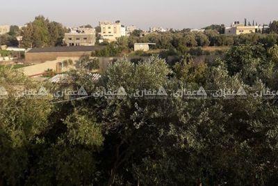بيت للبيع اخر شارع جامع علي ابن طالب