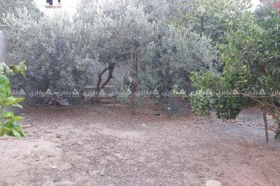 قطعة ارض مشجرة ومسورة للبيع