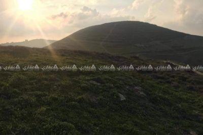 قطعة أرض كوشان طابو مستقل