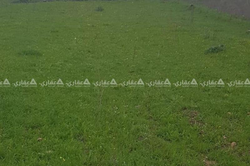 ارض في صفا قضاء رام الله