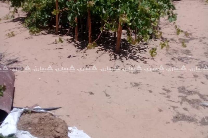 ارض للبيع منطقة الشيخ عجلين