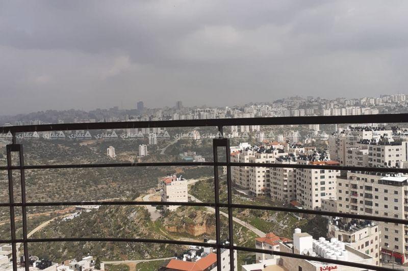 بيتونيا بالقرب من دوار الفواكه شارع عين عريك