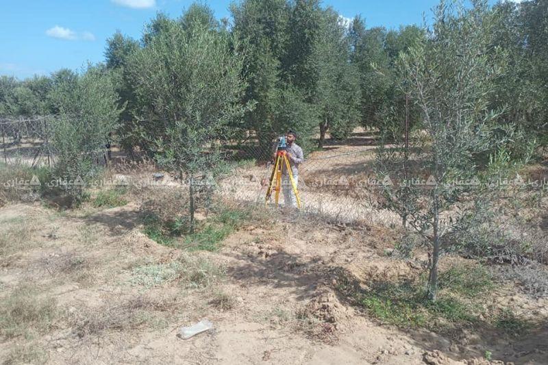 قطعة أرض للبيع مشجرة من جميع أنواع الشجر