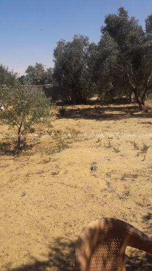 قطعة أرض للبيع شرق محطة التحرير