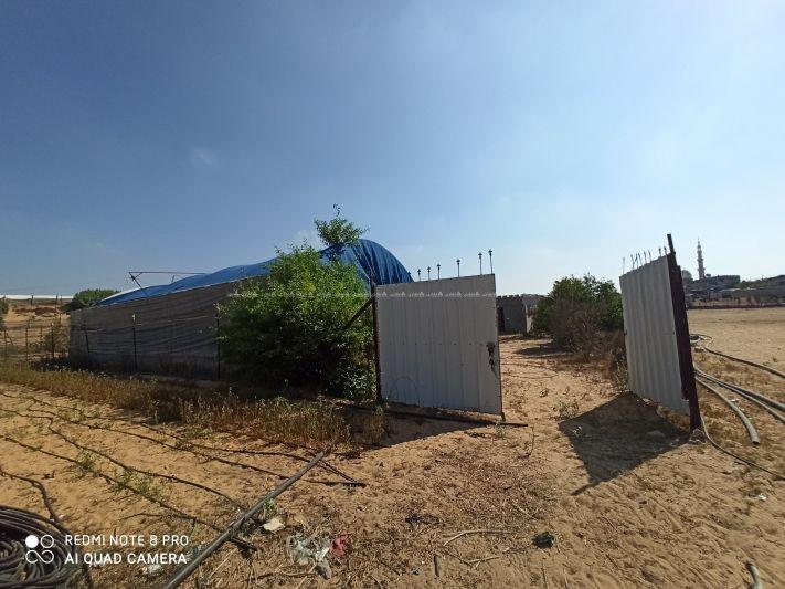 أرض دونم للبيع رفح - مراج - حي النصر